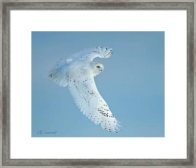 Snowy Against Blue Sky Framed Print
