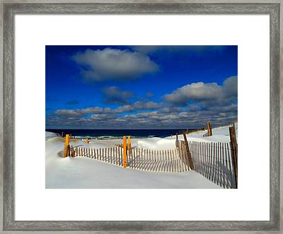 Snowy Beach  Framed Print by Dianne Cowen