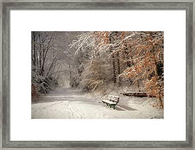 Snowy Bench Framed Print by Lori Deiter