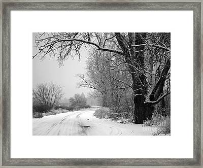 Snowy Branch Over Country Road - Black And White Framed Print