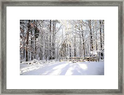 Snowy Chicken Coop Framed Print