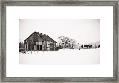 Snowy Day At The Farm Framed Print