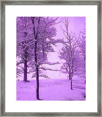 Framed Print featuring the photograph Snowy Day In Purple by Michelle Audas