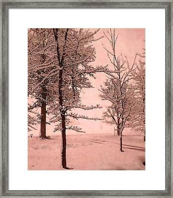 Framed Print featuring the photograph Snowy Day In Rose by Michelle Audas