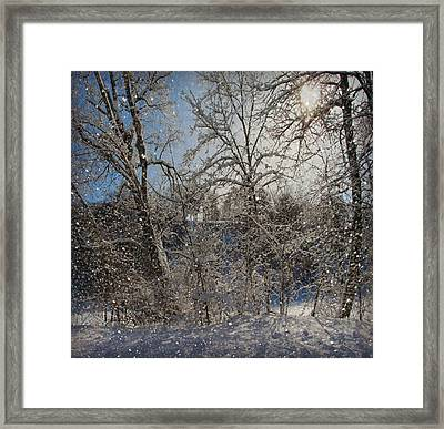 Snowy Day In The Park Framed Print by Kathy M Krause