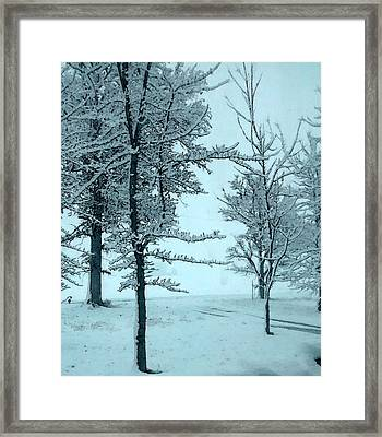 Framed Print featuring the photograph Snowy Day by Michelle Audas