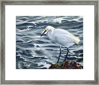 Snowy Egret On Jetty Rock Framed Print