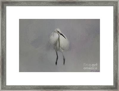 Snowy Elegance Framed Print by Eva Lechner