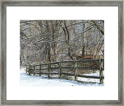 Winter Fence Framed Print