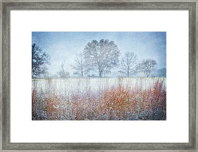 Snowy Field 2 - Winter At Retzer Nature Center  Framed Print by Jennifer Rondinelli Reilly - Fine Art Photography