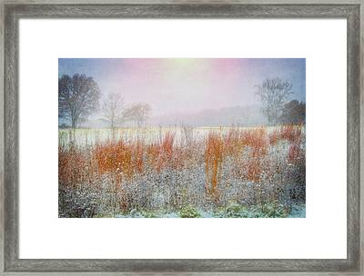 Snowy Field - Winter At Retzer Nature Center  Framed Print by Jennifer Rondinelli Reilly - Fine Art Photography