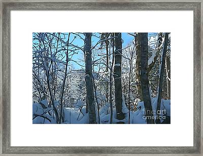 Snowy Forest Framed Print by JR Photography