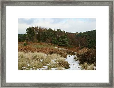Snowy Hednesford Hills Framed Print