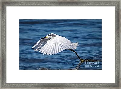 Snowy Liftoff Framed Print