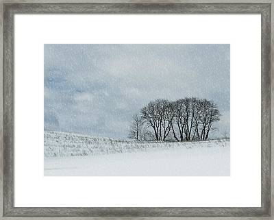 Snowy Pasture Framed Print by JAMART Photography