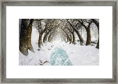 Snowy Path Framed Print