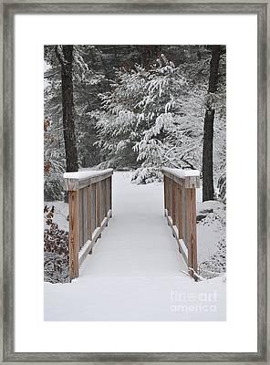 Snowy Path Framed Print by Catherine Reusch Daley