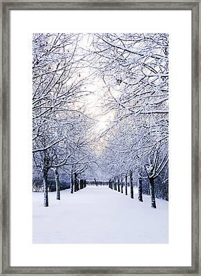 Snowy Pathway Framed Print