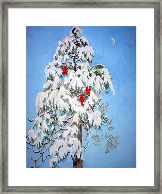 Snowy Pine With Cardinals Framed Print by Ethel Vrana