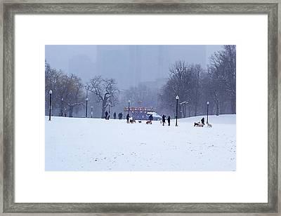 Snowy Playtime Boston Common Boston Ma Framed Print