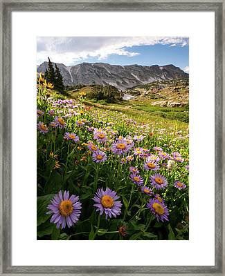 Snowy Range Flowers Framed Print