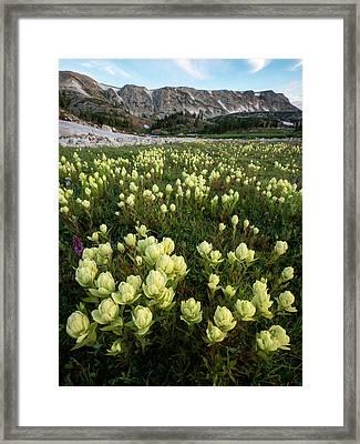 Snowy Range Paintbrush Framed Print