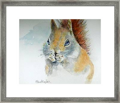 Snowy Red Squirrel Framed Print