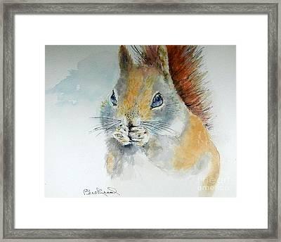 Snowy Red Squirrel Framed Print