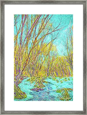 Snowy River Framed Print by Joel Bruce Wallach