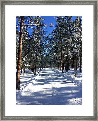 Snowy Road Framed Print