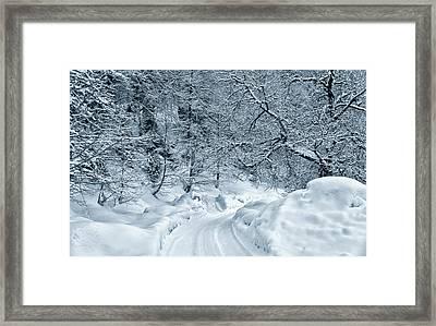Snowy Road Framed Print by Svetlana Sewell