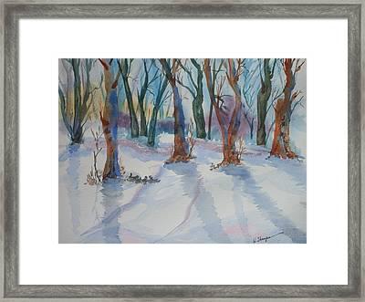 Snowy Shadows Framed Print by Warren Thompson