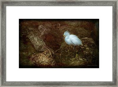 Snowy Style Framed Print by Marvin Spates