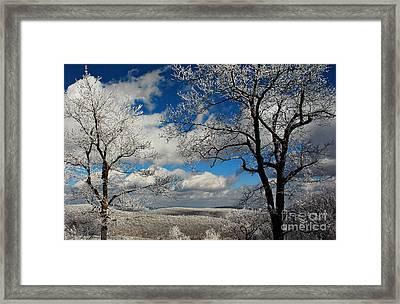 Snowy Sunday Framed Print by Lois Bryan