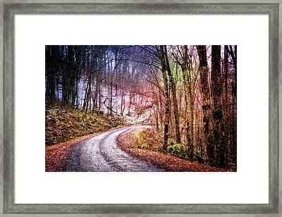 Snowy Trail Into The Mountains Framed Print
