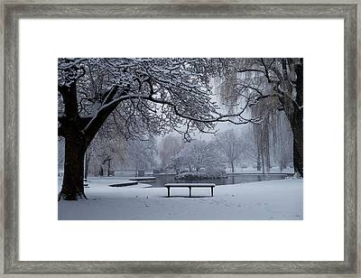 Snowy Tree The Public Garden Boston Ma Bench Framed Print