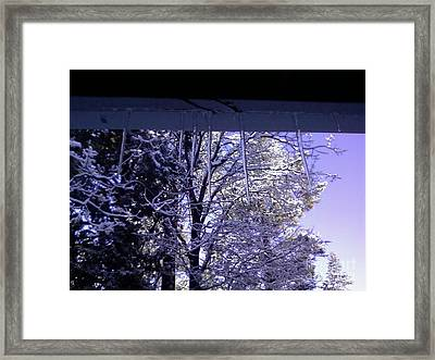 Snowy Trees And Icecicles Framed Print