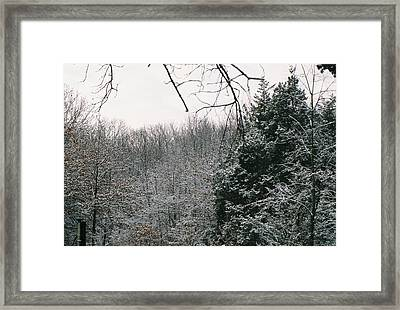Snowy Woods Framed Print by C E McConnell