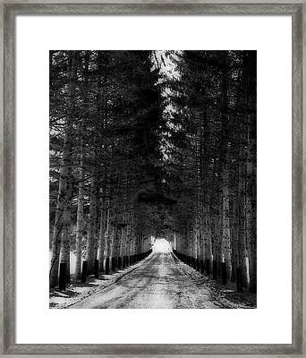 Snowytrail To Winter Framed Print
