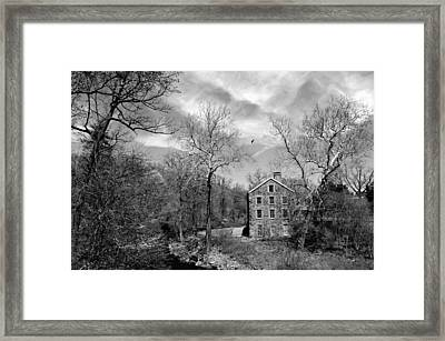 Framed Print featuring the photograph Snuff by Diana Angstadt