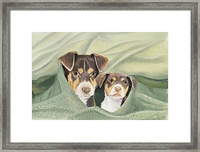 Snuggle Buddies Framed Print by Barbara Keel