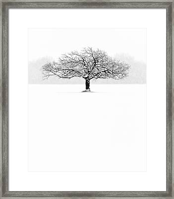 So Alone, A Perfect Reflection Of My Empty Soul Framed Print by Matt Anderson