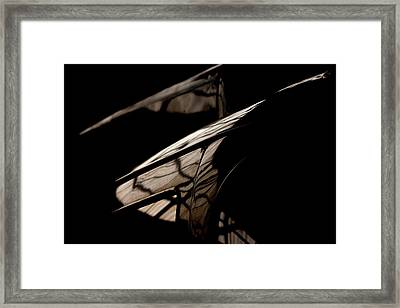 Framed Print featuring the photograph So Beautiful by Paul Job