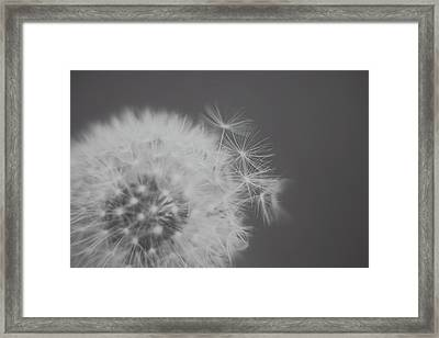 So Bittersweet This Life Framed Print