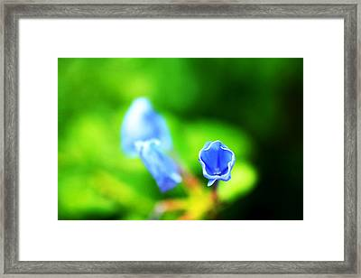 So Blue Framed Print