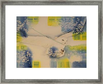 S.o. Cold Framed Print by Terry Honstead