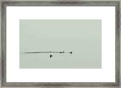 So Far Away Framed Print by Rebecca Sherman