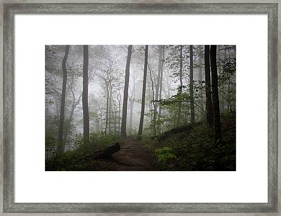 So Foggy Framed Print