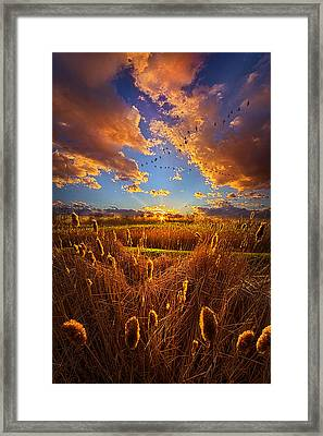 So Long I Can't Remember Framed Print by Phil Koch