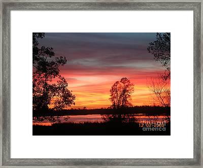 So Red Framed Print by Lee Ann Wunderler